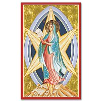 Mary Star of the New Evangelization