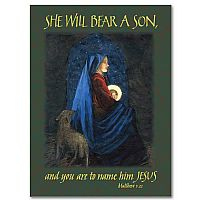 She will Bear a Son...