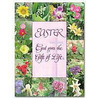 Easter: God Gives the Gift of Life