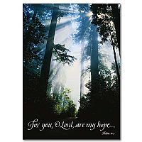 For You, O Lord, Are My Hope...