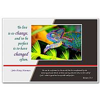 To Live Is To Change