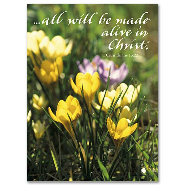 All will be made alive in christ easter card all will be made alive in christ easter card m4hsunfo