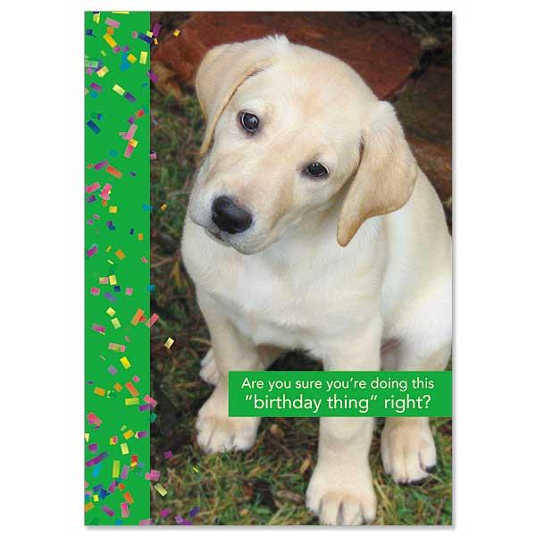 Zoey Peoples Best Friend Birthday Card