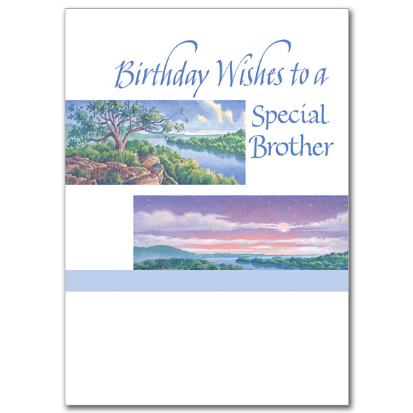 Birthday Wishes to a Special Brother: Birthday Card