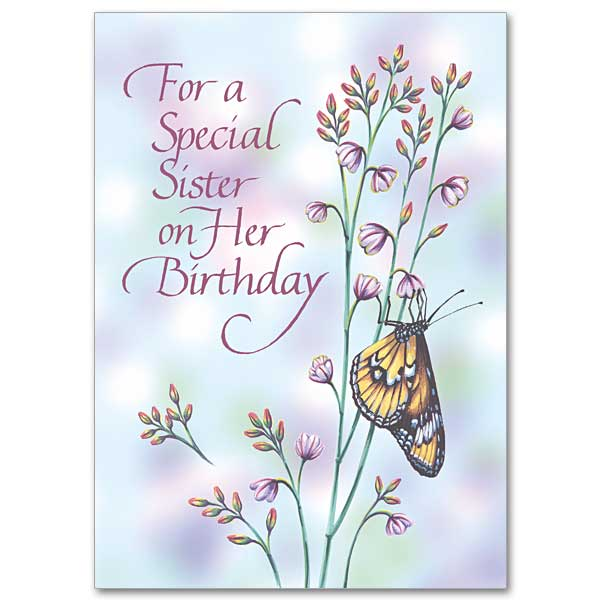 For A Special Sister Family Birthday Card