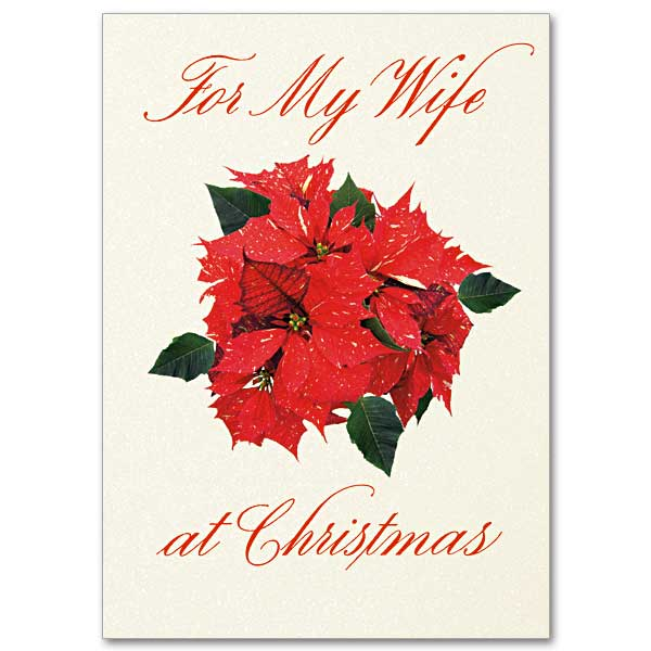 God gave me the gift of you christmas card for wife christmas card for wife m4hsunfo